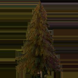 Giant FICSMAS Tree