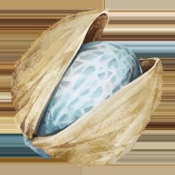 Beryl Nut